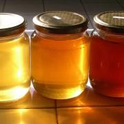 diversi-mielei
