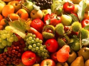 autumn_fruits