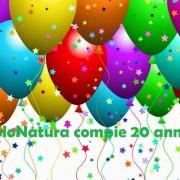 SLNT compleannoFelicitar-globos