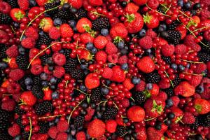 plenty of fresh mixed berries