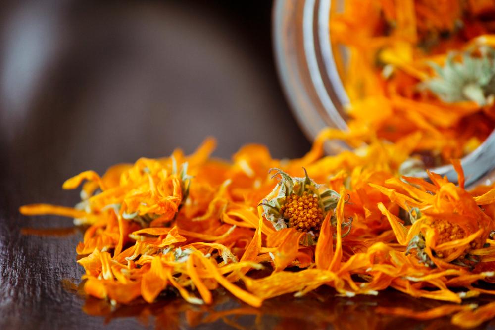calendula-fiori-essiccati