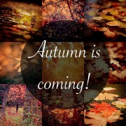 Autumn-Is-Coming
