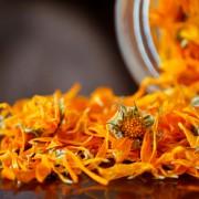 calendula-fiori-essiccati (1)