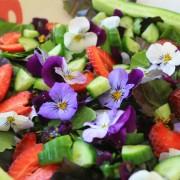 cucinare con i fiori big