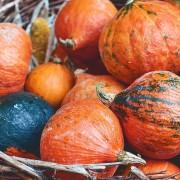 Beautiful red pumpkins in a wicker basket