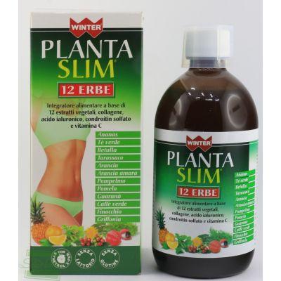 PLANTA SLIM 12 ERBE 500 ml INTEGRATORE ALIMENTARE WINTER